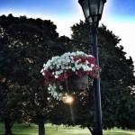 At Victoria Park, Charlottetown.
